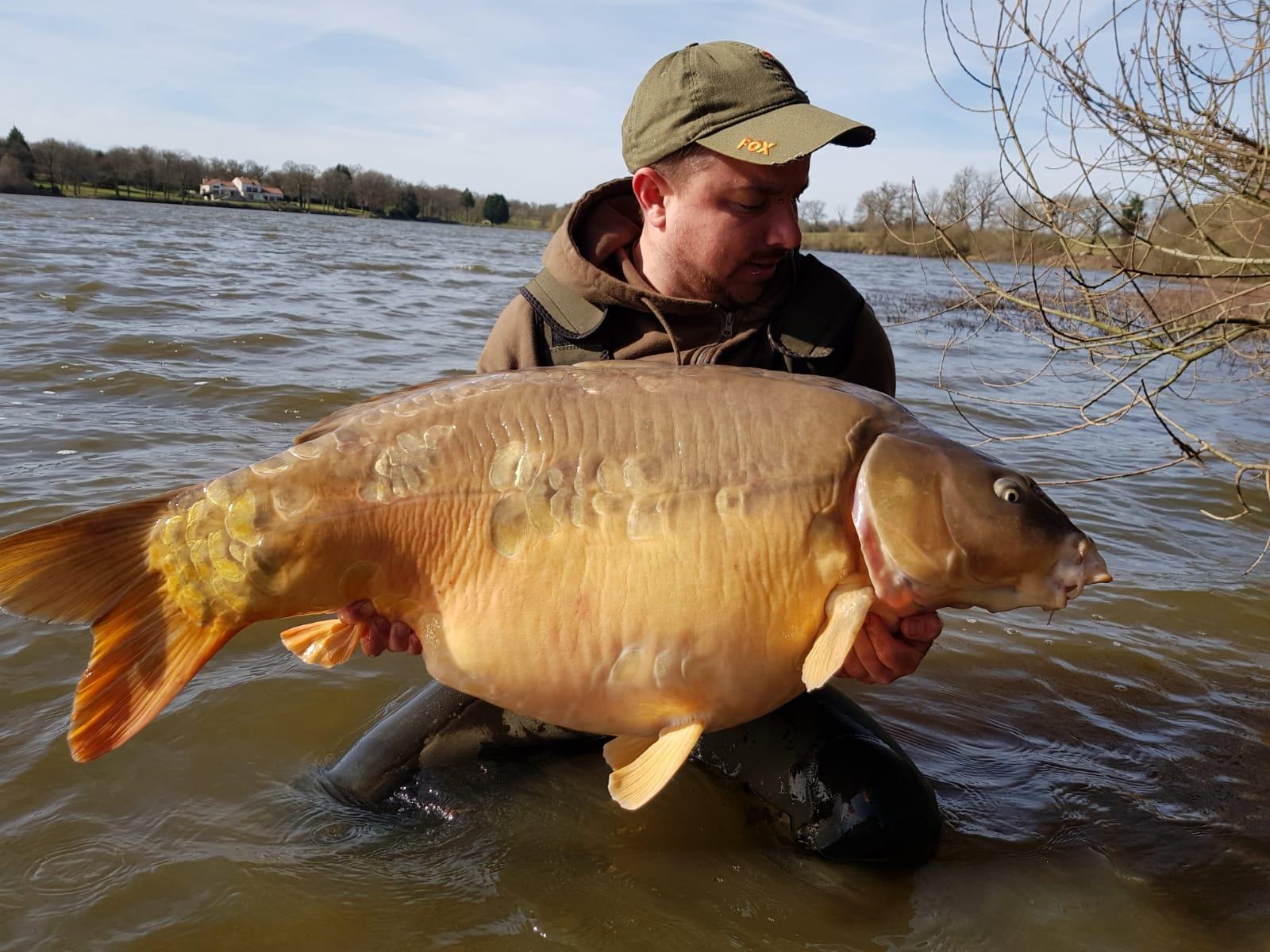 Villedon 31,8kg